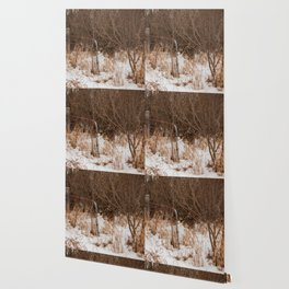 Gated Wallpaper