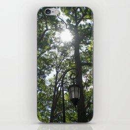 Lamppost, Wellesley College iPhone Skin