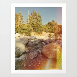 Forest Falls VII Art Print