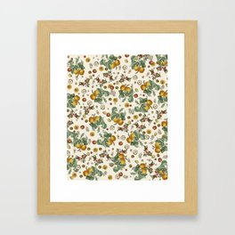 Apples Pears Peaches Framed Art Print
