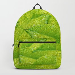Green leafs pattern  Backpack