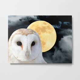 Barn Owl Bird Modern Country Art Modern Cottage Chic Art A493 Metal Print
