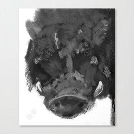 The Great Hog Canvas Print