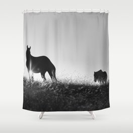 Romania memories Shower Curtain