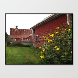 Vermont Barn with Sunflowers Canvas Print