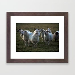 Different Points Of View Framed Art Print