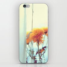 She'll Let You In iPhone & iPod Skin