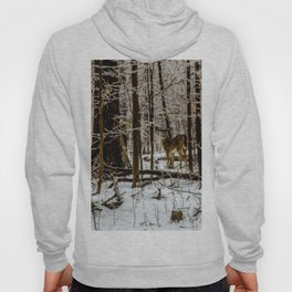 Deer in the Glistening Forest by Teresa Thompson Hoody