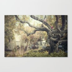 nice dream Canvas Print