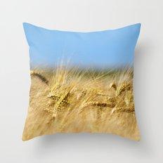 Blue & Gold Throw Pillow