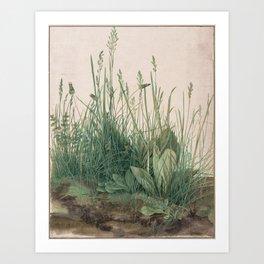 Albrecht Durer - The Large Piece of Turf Art Print