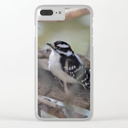 Downy Woodpecker Clear iPhone Case