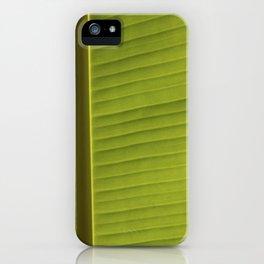 Banana Leaf II iPhone Case