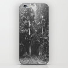 Life is but a fog  iPhone & iPod Skin