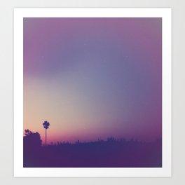 a summer night Art Print