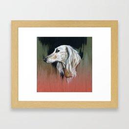 Saluki I - Illustrious dogs. Framed Art Print