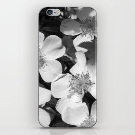 White dog rose iPhone Skin