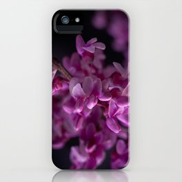 Red Bud Blossoms  iPhone Case