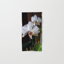 Graceful Orchids !! Hand & Bath Towel
