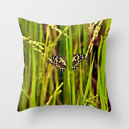 Butterfly in rice Throw Pillow