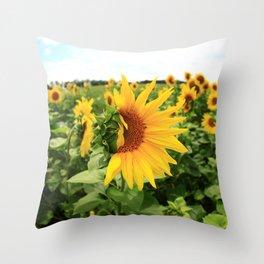 Sunflower 17 Throw Pillow