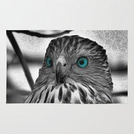 Black and White Hawk with Aqua Blue Eye A165 Rug