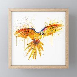 Flying Parrot watercolor Framed Mini Art Print