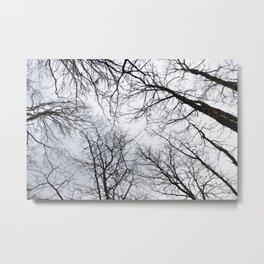 Naked trees tops Metal Print