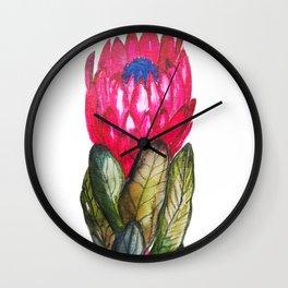 Protea dark pink Wall Clock