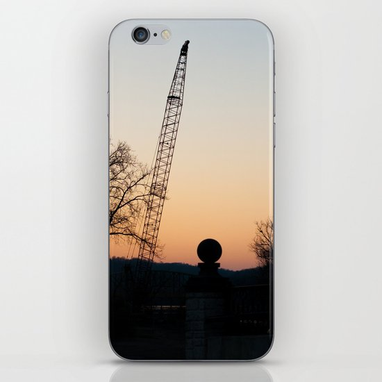 Cranes iPhone & iPod Skin