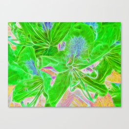 Rhododendron Lime Canvas Print