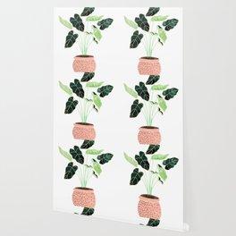 Home Wallpaper