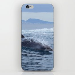 Dolphin: love for waves, love for life iPhone Skin