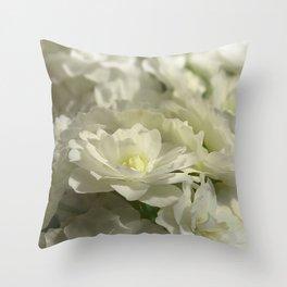 Pale Bridal Veil Throw Pillow