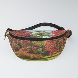 October Glory maple trees Fanny Pack