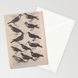 040-passer, merula, turdus5 Stationery Cards