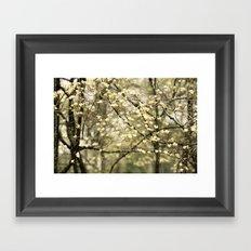 Let's Get Lost In The Dogwoods Framed Art Print