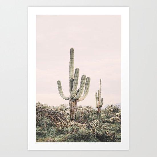 Pastel Pink Cactus by katypie