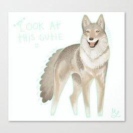 czechoslovakian wolfdog Canvas Print