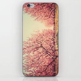 Springtime Dream iPhone Skin
