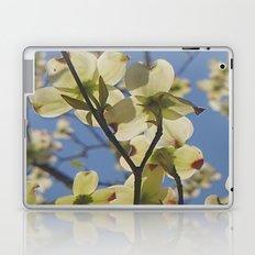 Dogwood Days of Spring Laptop & iPad Skin