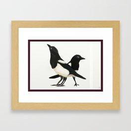 Two For Joy - Magpie Pair Framed Art Print