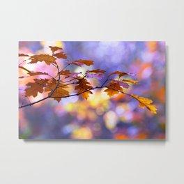 United Colours of Autumn Metal Print