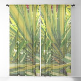 TROPICAL GREEN VARIEGATED AGAVE'S ART Sheer Curtain