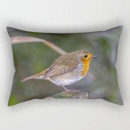 Mr. Robin. Rectangular Pillow