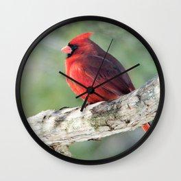 Serene Cardinal Wall Clock