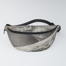 Ground Squirrel BW Fanny Pack