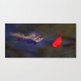 Bright Fish Canvas Print