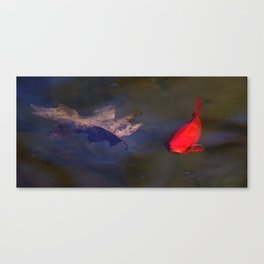Bright Fish Canvas Print