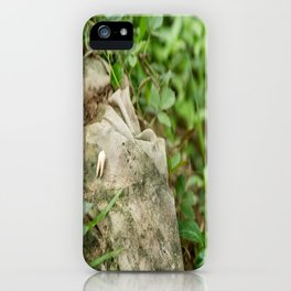 Tooth & Clothing, Killing Fields, Cambodia iPhone Case
